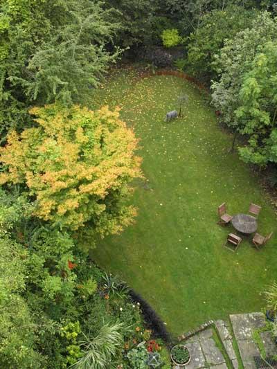 Garden September
