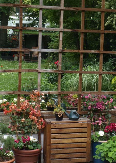 Garden through mirror